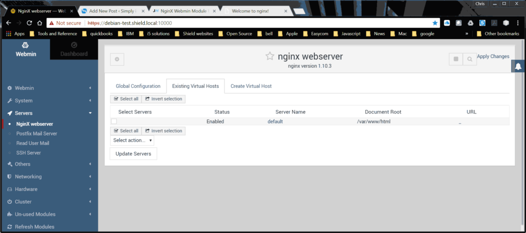 Nginx webmin interface
